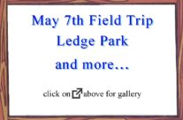 May 7th 2016 Field Trip