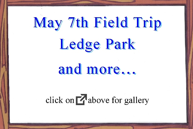May 7th 2016 Field Trip